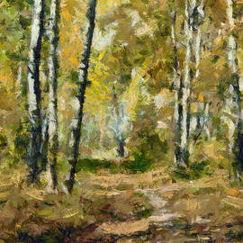 Birch Trees in Autumn by Dragica Micki Fortuna