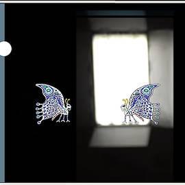 Butterflies by Hartmut Jager
