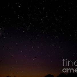 Comet Neowise in Ursa Major by Alana Ranney