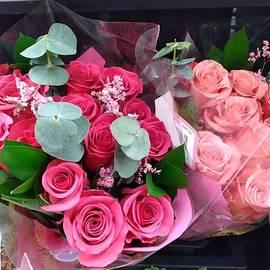 Dozen PInk Roses by Charlotte Gray