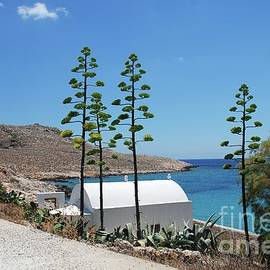 Halki island chapel by David Fowler