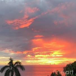 Hawaiian Sunset by Karen Nicholson