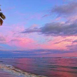 Lahaina Sunset by James Roemmling