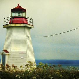 Lighthouse Nova Scotia by Tatiana Travelways