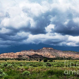 Northern New Mexico  by Roselynne Broussard