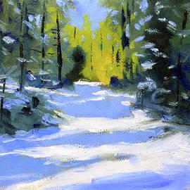 Snow Shadows by Nancy Merkle