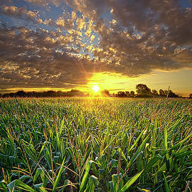 Therefore We Do Not Lose Heart by Phil Koch