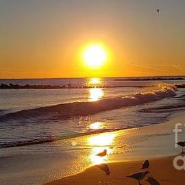 Sunset over the Atlantic Ocean 3 by Olga Malamud-Pavlovich