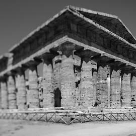 Memories of Paestum Temples  by Casimiro Art