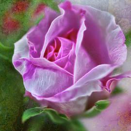Pink Rose at Botanical Gardens-Digital Painting by Cordia Murphy