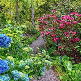 Summer Garden by Adrian Evans