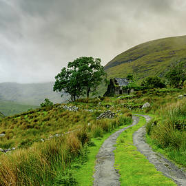 The Black Valley by Fergal Gleeson