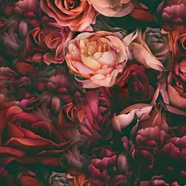 Classic Crimson by Jessica Jenney