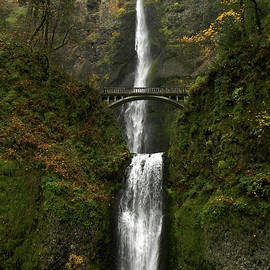 Multnomah Falls by Whispering Peaks Photography