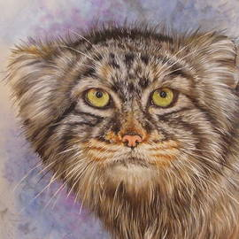 Pallas' Cat by Barbara Keith