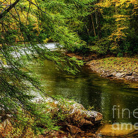 Williams River Autumn Rain by Thomas R Fletcher