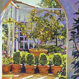 Lemon Tree Bel-air Hotel by David Lloyd Glover