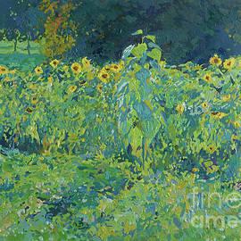 Sunflowers by Simon Kozhin