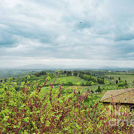 Beautiful spring froggy landscape in Tuscany by Beautiful Things