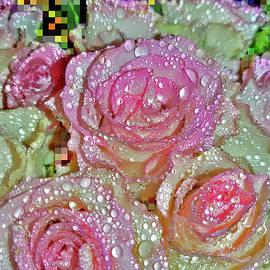 Flower Carpet. by Andy i Za