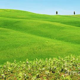 Beautiful spring minimalistic landscape with green hills in Tuscany by Beautiful Things