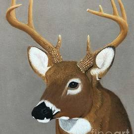 9 Point Whitetail  by George Sonner