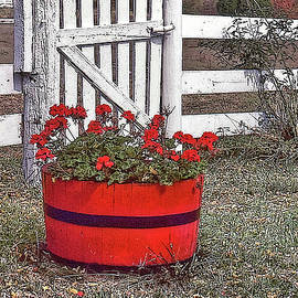 A Barrel Full by Randall Dill