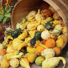 A Basket of Gourds by Barbara Elizabeth