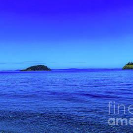 A beautiful blue by Jeff Swan