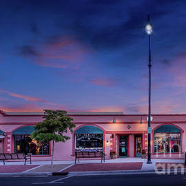 A Beautiful Morning on Venice Avenue, in Venice, Florida by Liesl Walsh