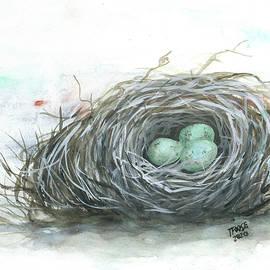 A Bird's Nest by Taphath Foose