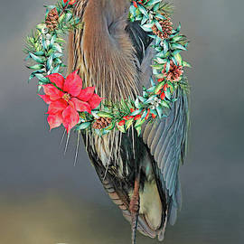 A Blue Heron Christmas Greeting by HH Photography of Florida