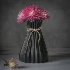 A Bouquet of Pink Asters by Sylvia Goldkranz