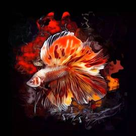 A Bright Betta Fish  by Scott Wallace Digital Designs