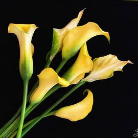 A Bunch Of Yellow by Barbara Zahno