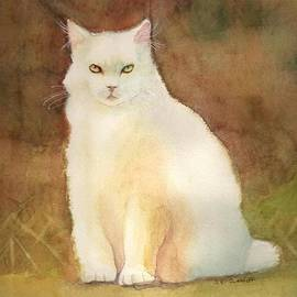 A Cat with Cattitude by Susan Cunniff