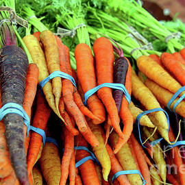 A Contrast On Carrots by Michael May