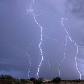 A Crazy Lightning Storm, Palominas, AZ, USA by Derrick Neill
