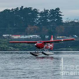 A DHC-3T Vazar Turbine Otter Touching Victoria Harbour For Landi by Joe A Kunzler
