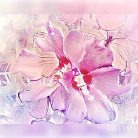 A Dreaming Hibiscus by Debra Lynch