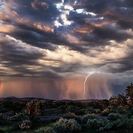 A Dreamy Sonoran Sunset In The Supes  by Saija Lehtonen