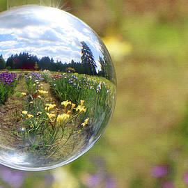 A Drop in the Bucket by Diane Stevens