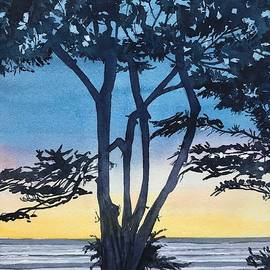 A Favourite Tree - Scenic Drive - Carmel  by Luisa Millicent