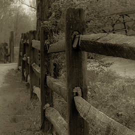 A Fence to Wisdom... by Shellie Hill