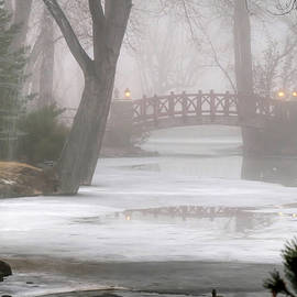 A Foggy Winter Morning by Donna Kennedy
