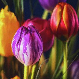 A Garden of Color by Susan Maxwell Schmidt