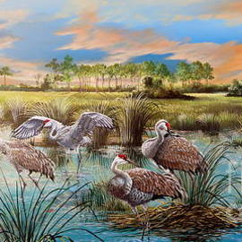 A gathering of Beauty-Florida Sandhill Cranes by Daniel Butler
