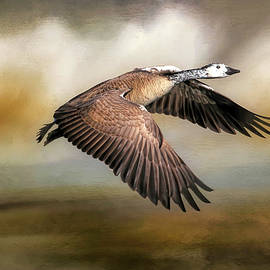 A Goose Of A Different Color by Donna Kennedy