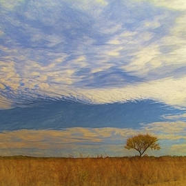 A Lonely Tree With a Big Sky by Ann Powell