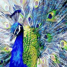 A Peacock's Flare by Chrystyne Novack